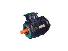 风电专用电动机